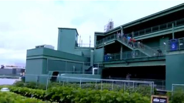 NESN Clubhouse: Making A Salad From Scratch At Fenway Farms